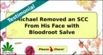 Michael M featured
