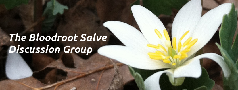FB Bloodroot Discussion Group Cover